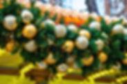 Palmen-SeychellenDSC_5429-2.jpg