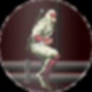 shinobi-button.png