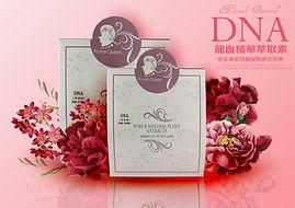 粉色花DNA正面.jpg
