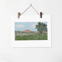 Hampi India Riverbank with Coconut Trees