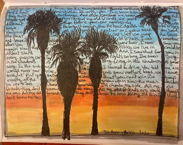 palm trees sketch
