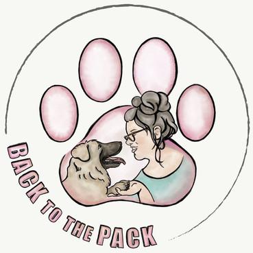 עיצוב לוגו - מסע בדרך ללהקה