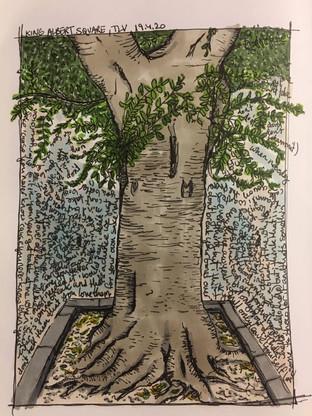 TREE SKETCH BOTTLE IT IN.jpg