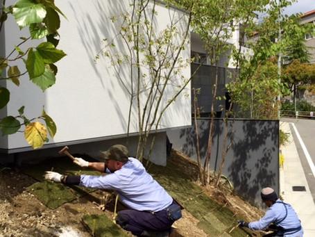 「夙川の家」作庭工事