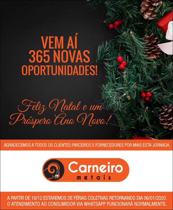 Carneiro-NewsFimDeAno-2019-.jpg