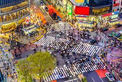 Quadros E2G Design cidades
