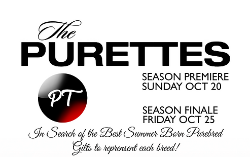 Purette_Ad_Layout_edited.png