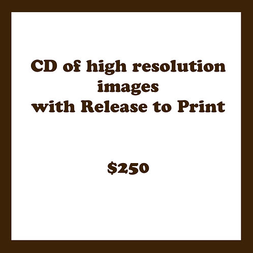 CD with RTP