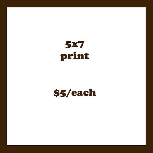5X7 PRINT