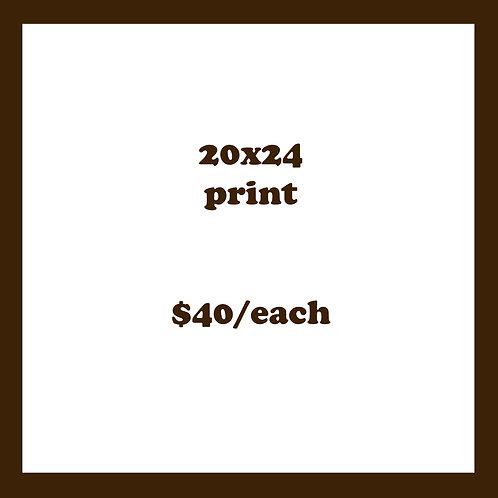 20X24 PRINT