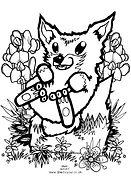 Cub_Fox.jpg