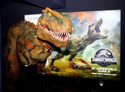 Walkabout Dinosaur Hire, Walkabout Dragon Hire, Walkabout Wolf Hire, Hire a Dinosaur, Hire a Dragon,