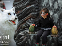 Spirit the White Dire Wolf