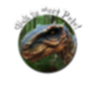 Animatronic Dinosaur Hire and Animatronic Dragon Hire and Wolf Hire T-Rex Party Dino Hire