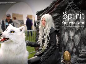 Spirit the White Dire Wolf