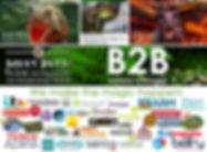 Promo page.jpg