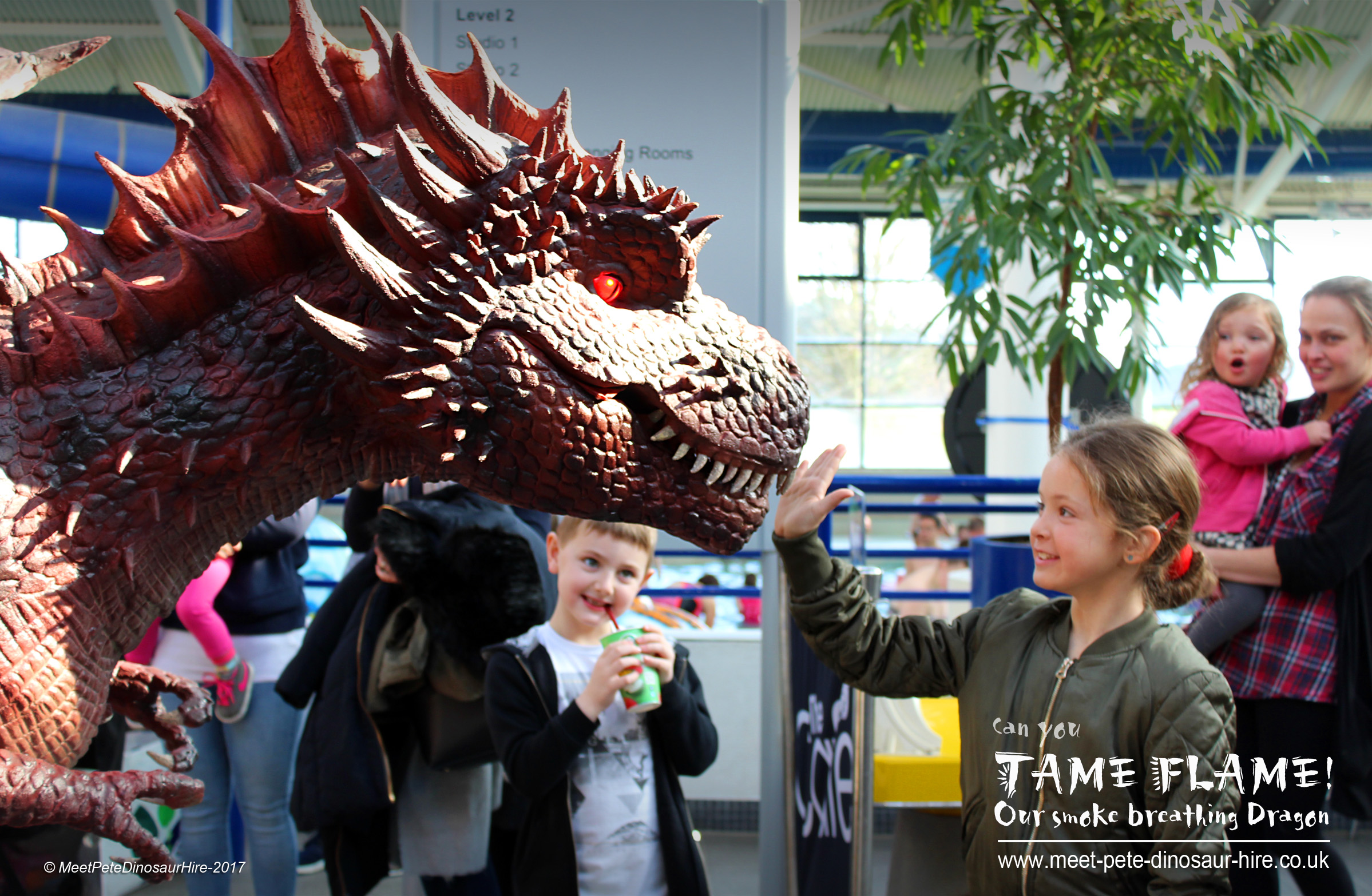 Animatronic Walkabout Dragon Hire