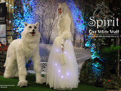 Spirit and Snow Queen Set.jpg