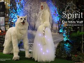 Spirit and Snow Queen Set.jpg