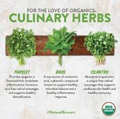 Organic Herb Benefits