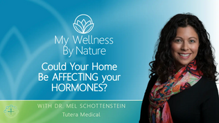 Could Your Home Be Affecting Your Hormones?
