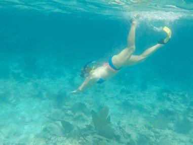 Snorkel2_edited.jpg