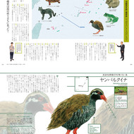 Discover Japan『世界遺産をめぐる冒険』
