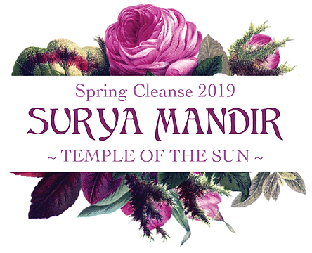spring-cleanse-2019-logo.png