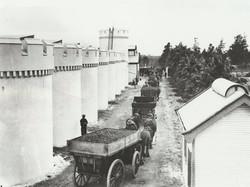 Dorrien 1908