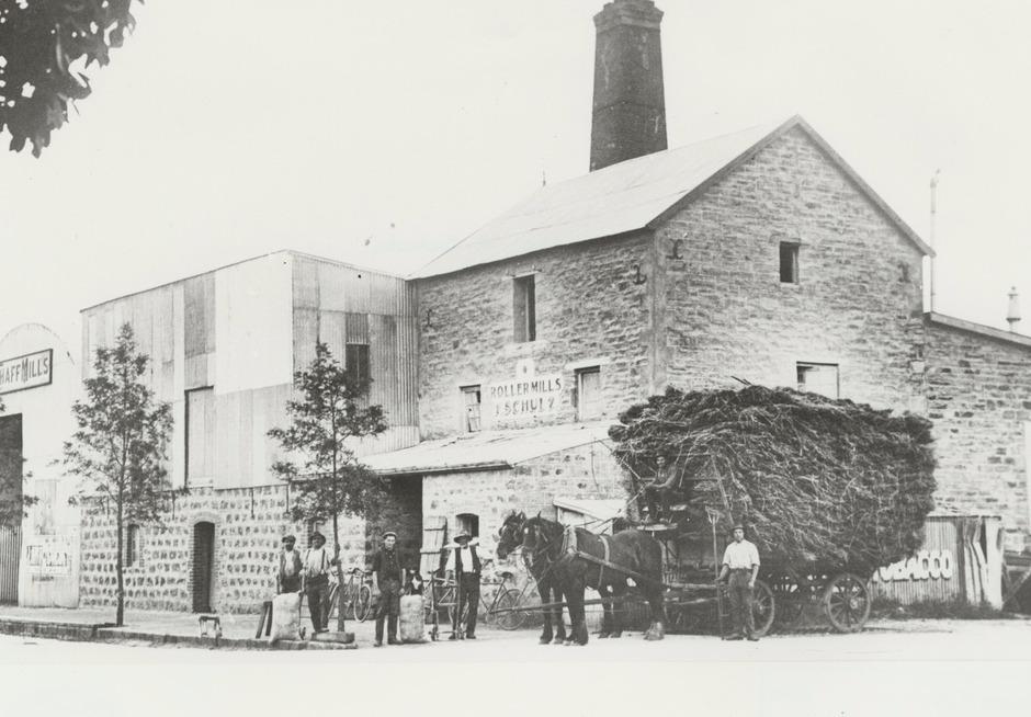 Tanunda Mills 1910