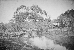 Tanunda Rose Bridge 1880