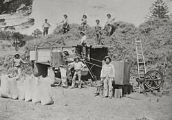 Threshing machine 1910