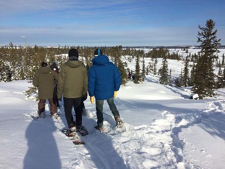 Snowshoeing 02.2016 (unknown credit) (3)