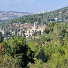 The Garden and Forest of Ein Karem