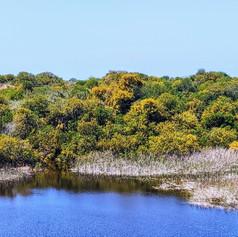 Nitzanim Lake