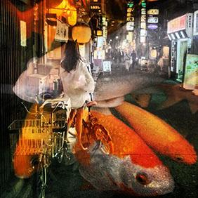 photo_makinomichiko_series01_002_tokyokingyo01