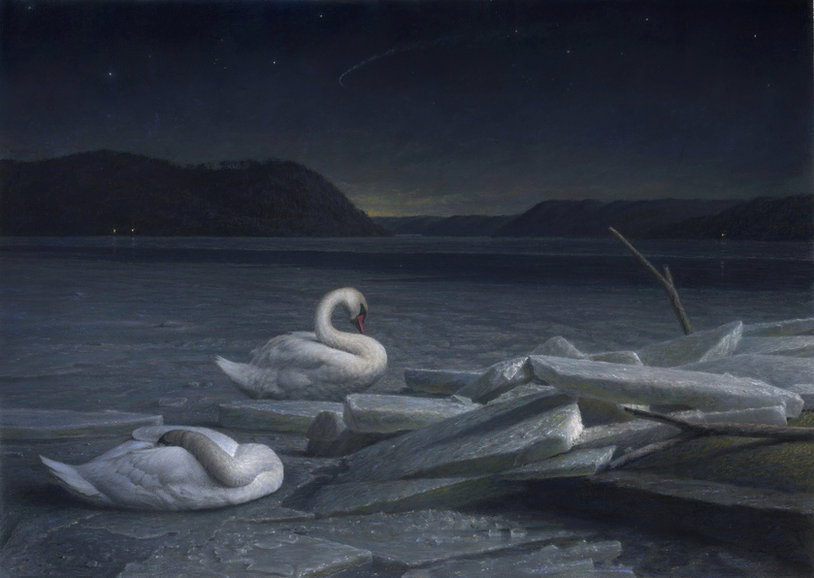 Resting%2520Swans%2520best%2520for%2520s