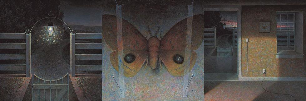 Moth8sharpdetail2_edited.jpg