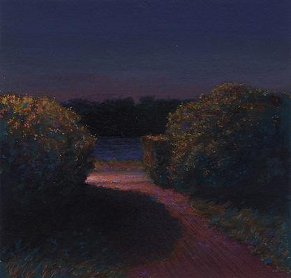 Sunken Garden, Night.jpg