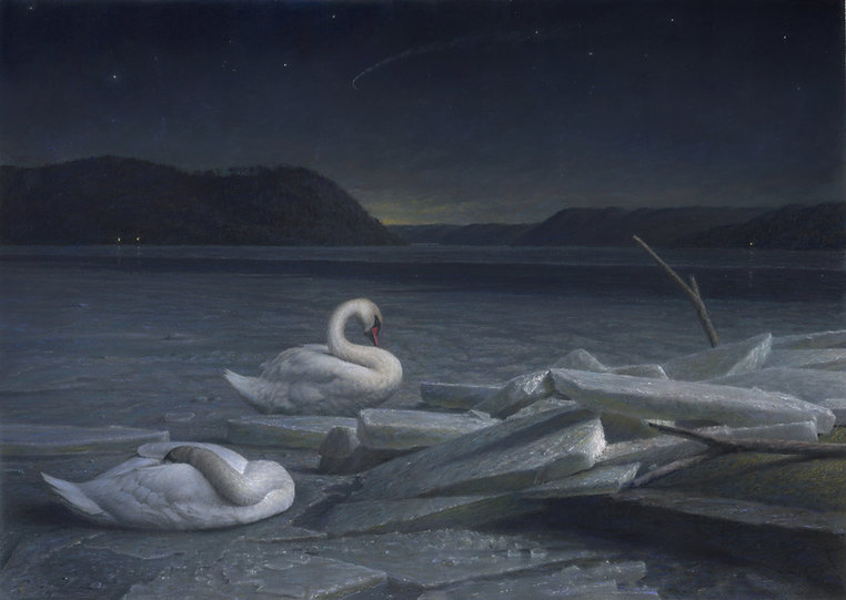 Sleeping Swans best 13 small (1).jpg