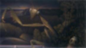 Predator9.jpg