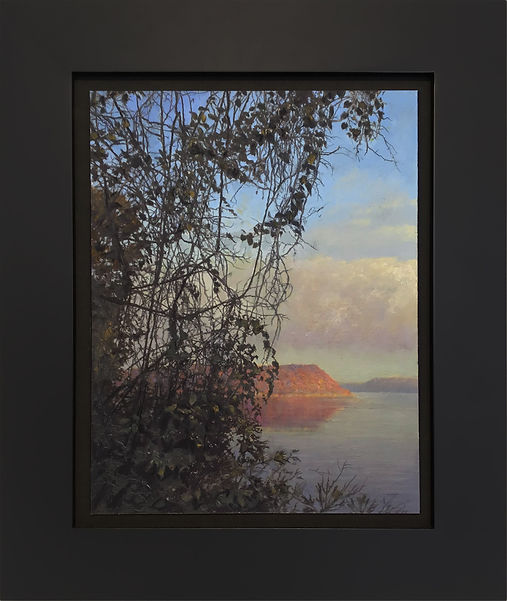 Veil framed best2.jpg
