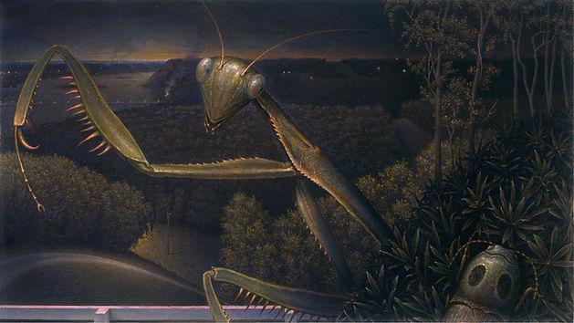 Copy of Predator9.jpg