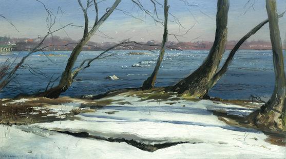 Winter Gulls on the Susquehanna2.jpg