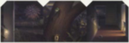 Cicada ultimate 13 9 inch.jpg