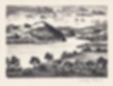 Dehn Susquehanna 1946.jpg