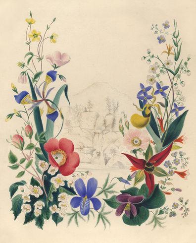 Edwin Whitefield - Embury Title page.jpg