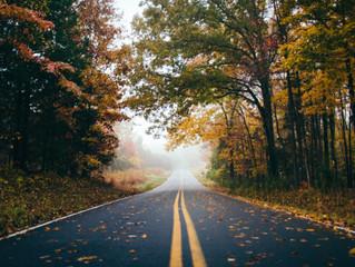 Įspėja saugotis rudens pavojų keliuose: šlapi lapai – lyg ledas žiemą