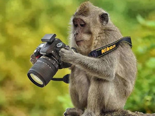 You're not a Photographer... Just because you call yourself one.