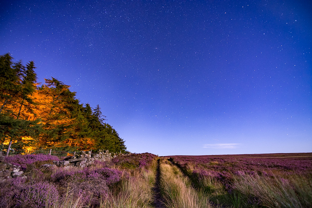 Guisborough woods astrophotography North York Moors